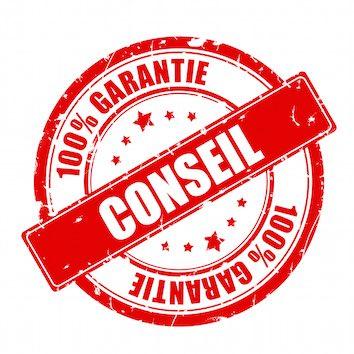 assurance fraude